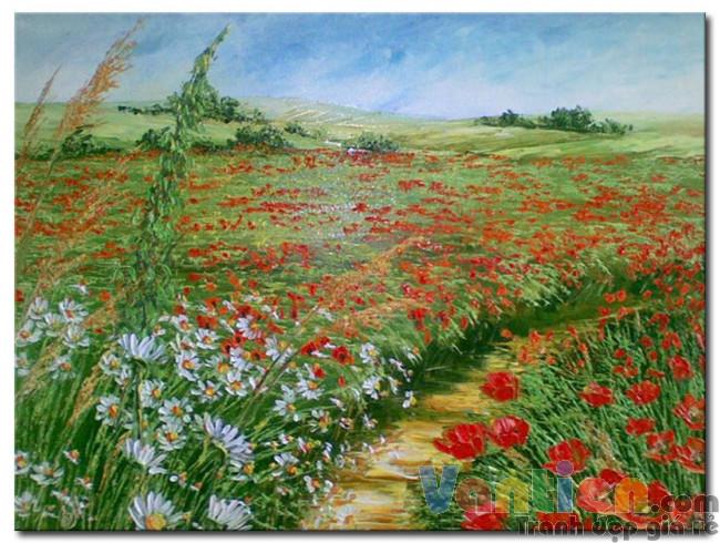 Cánh Đồng Hoa Poppy M1689