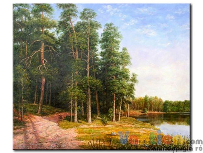 Cánh Rừng Bên Bờ Sông M1165