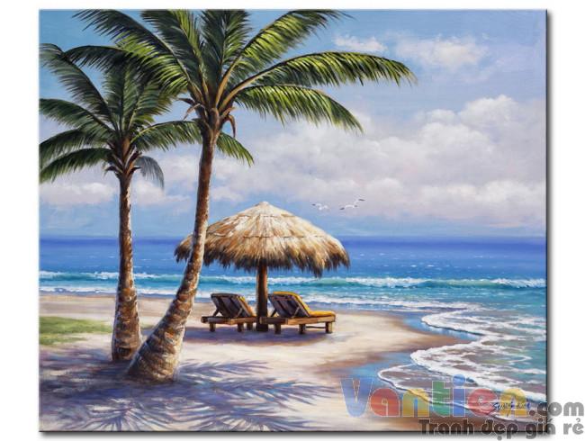 Cây Dừa Trên Bãi Biển M1859