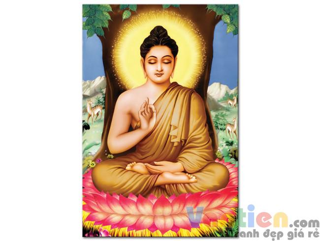 Đức Phật Thích Ca M1668