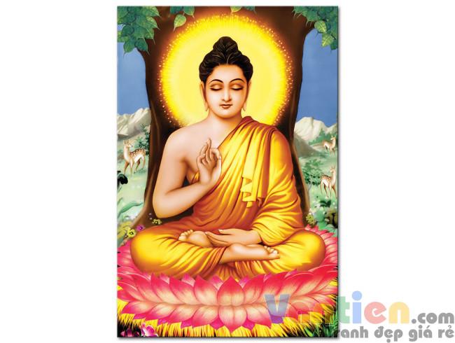 Đức Phật Thích Ca M1669
