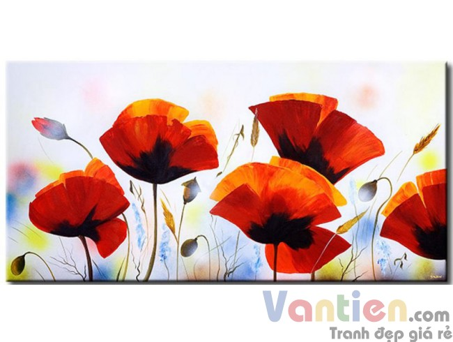 Những Cánh Hoa Poppy M0792