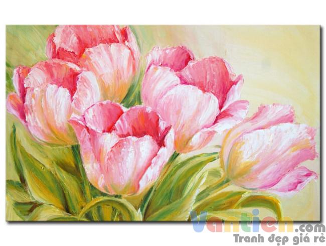 Những Cánh Hoa Tulip M1512