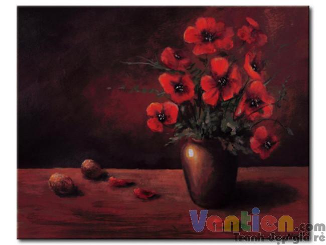 Poppy Khoe Sắc M0920