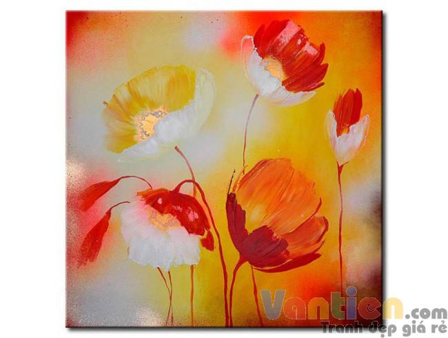Poppy Khoe Sắc M0964