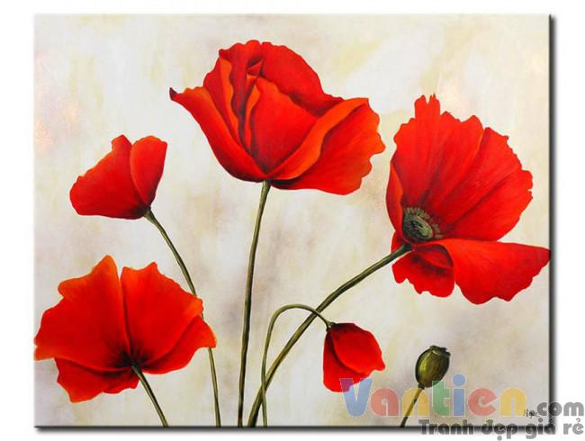 Poppy Khoe Sắc M0983