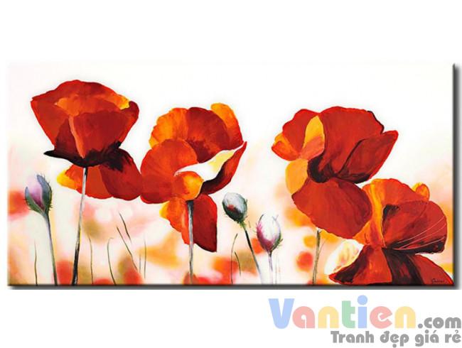 Sắc Hoa Poppy M0798