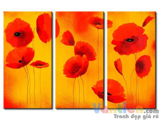 Sắc Hoa Poppy M0810