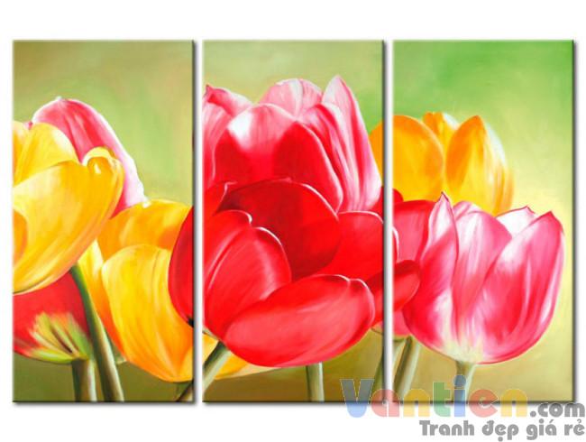 Sắc Hoa Tulip M1200