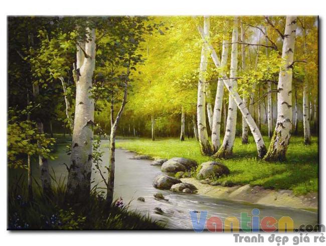 Suối Nước Trong Rừng M1115