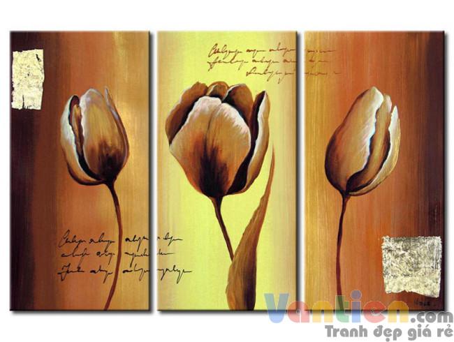 Tulip Khoe Sắc M1182
