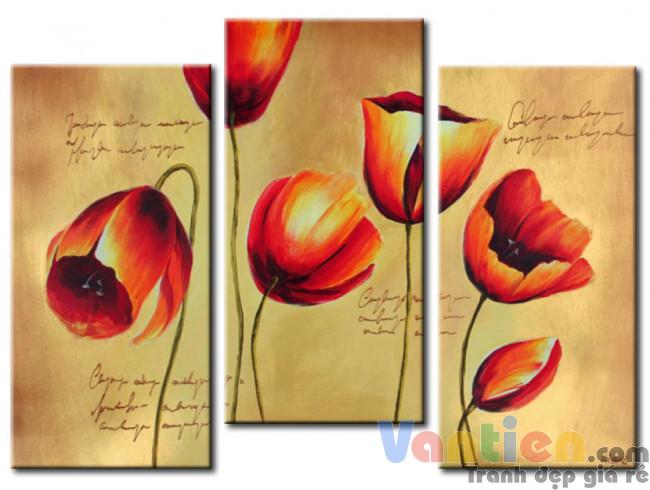 Tulip Khoe Sắc M1187