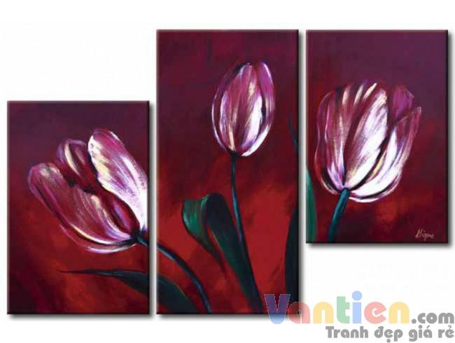 Tulip Khoe Sắc M1204