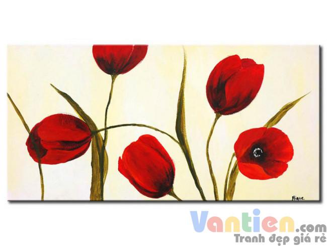 Tulip Khoe Sắc M1218