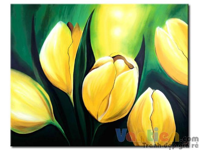 Tulip Khoe Sắc M1226