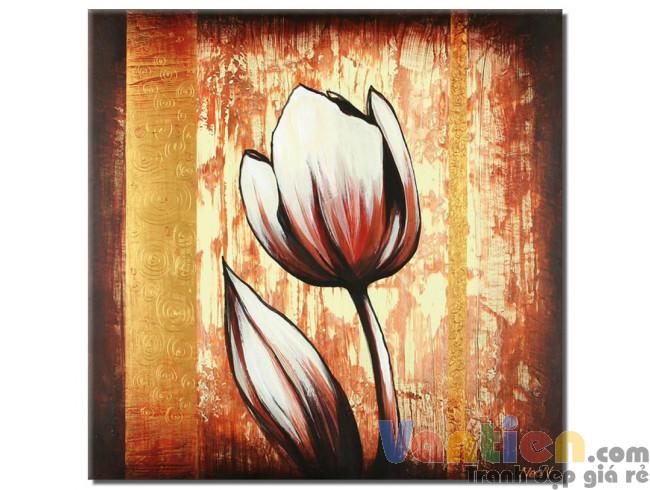 Tulip Khoe Sắc M1231