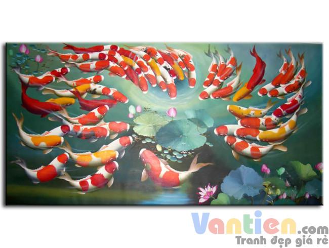 Đàn Cá Chép Trong Ao Sen M0118