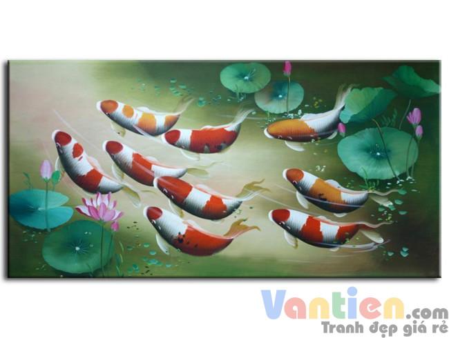 Đàn Cá Chép Trong Ao Sen M0119