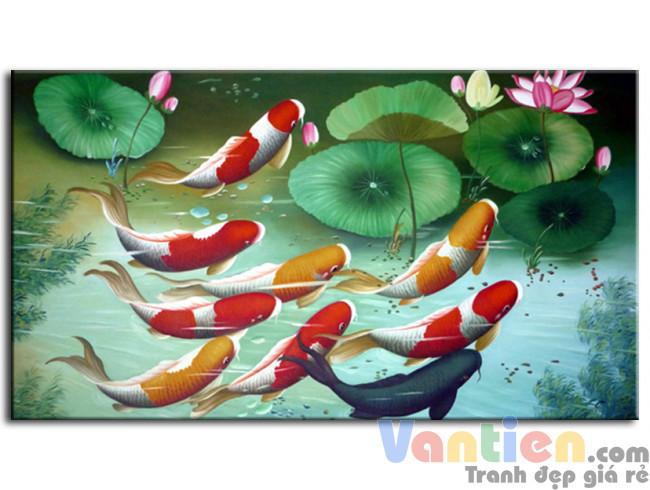 Đàn Cá Chép Trong Ao Sen M0120