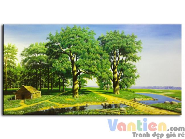 Phong Cảnh Rừng Xanh M0160