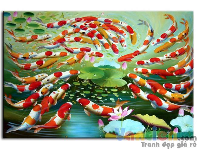 Đàn Cá Chép Trong Ao Sen M0173