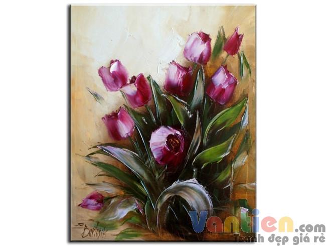 Tulip Khoe Sắc M0447