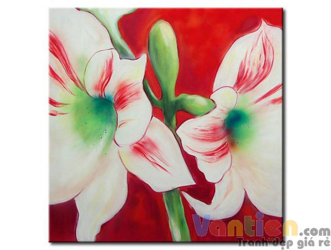 Hoa Ly Khoe Sắc M0484