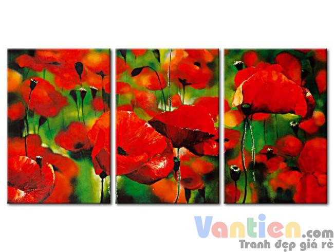 Sắc Hoa Poppy M0772