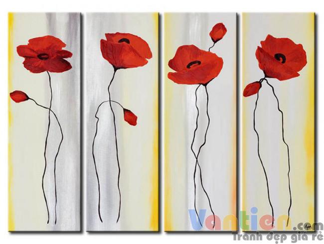 Những Cánh Hoa Poppy Khoe Sắc M0813
