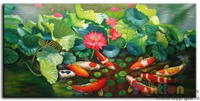 Đàn Cá Chép Trong Ao Sen M0117