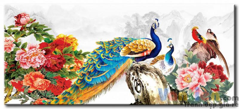 tranh chim cong