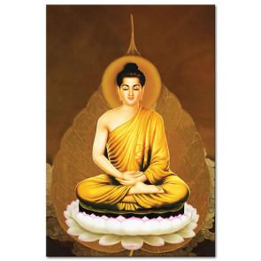 Đức Phật Thích Ca M1664