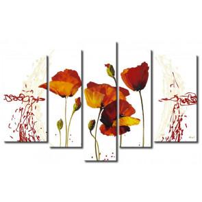 Những Cánh Hoa Poppy Khoe Sắc M0781