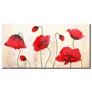 Những Cánh Hoa Poppy Khoe Sắc M0814