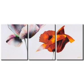 Những Cánh Hoa Poppy M0815