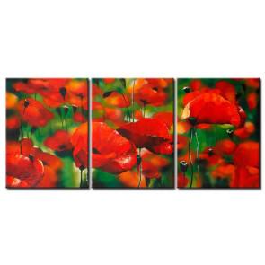Sắc Hoa Poppy M0802