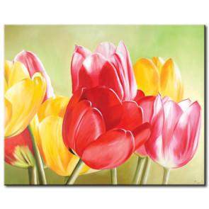 Sắc Hoa Tulip M1199