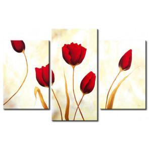 Tulip Khoe Sắc M1188