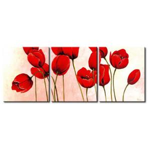 Tulip Khoe Sắc M1214