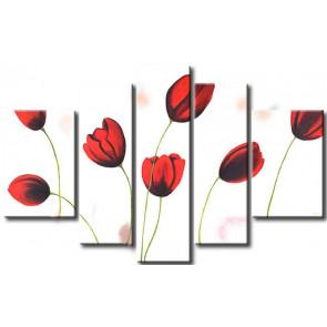 Tulip Khoe Sắc M1219