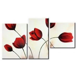 Tulip Khoe Sắc M1220