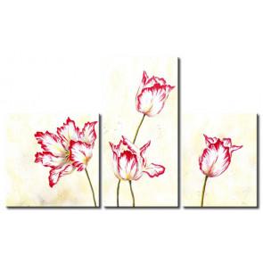 Tulip Quyến Rũ M1189