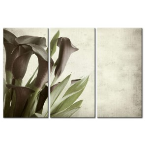 Hoa rum tone màu lãng mạn M025