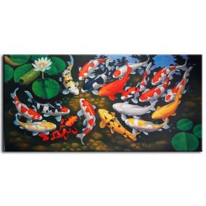 Đàn Cá Chép Trong Ao M0116