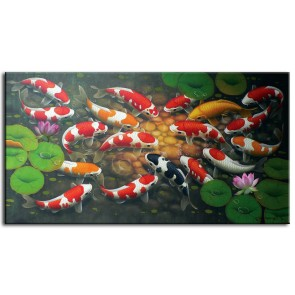 Đàn Cá Chép Trong Ao Sen M0172