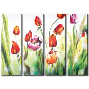 Vũ Điệu Hoa Tulip M1206