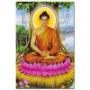 Đức Phật Thích Ca M1660