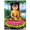 Đức Phật Thích Ca M1673