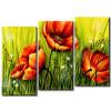 Sắc Hoa Poppy M0783