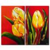 Sắc Hoa Tulip M1183